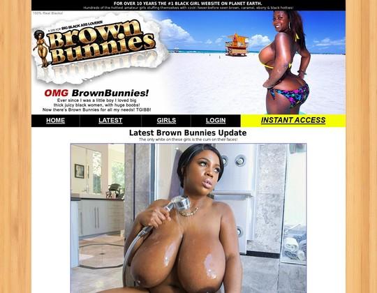brownbunnies.com