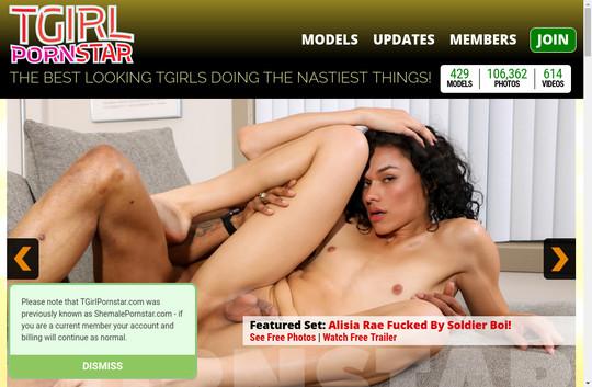 T Girl Pornstar